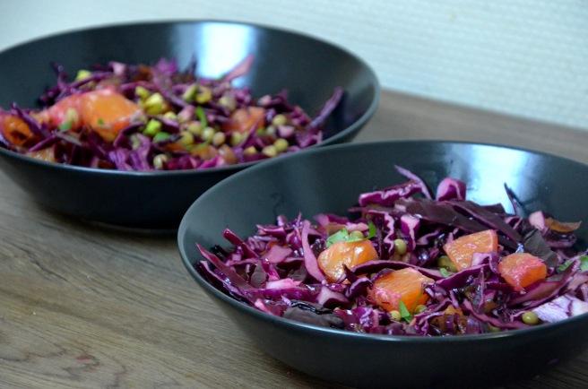 salade-de-chou-rouge-oranges-pistache-oignons